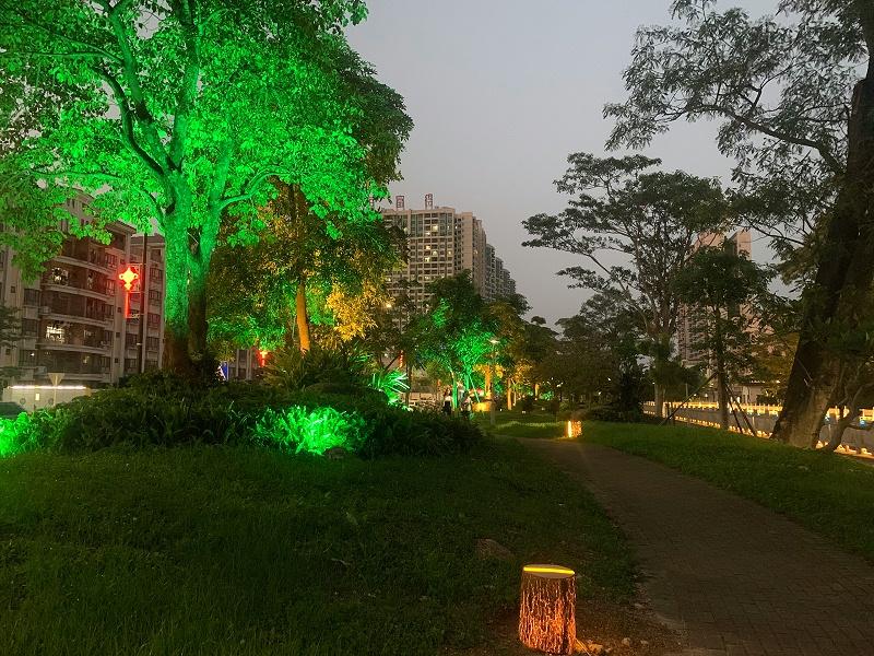 公园景观亮化